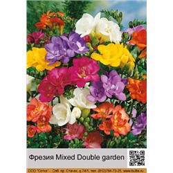 Фрезия Mixed Double garden